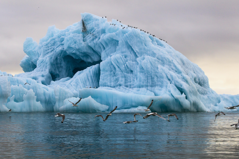 Валдайский клуб совместно с НИУ ВШЭ проведут семинар о международной безопасности и сотрудничестве в Арктике