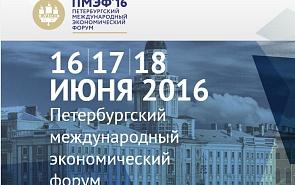 Участие клуба «Валдай» в XX Петербургском международном экономическом форуме
