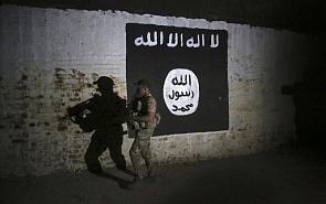 Индивидуальный джихад. Трансформация ДАИШ после поражения в Сирии